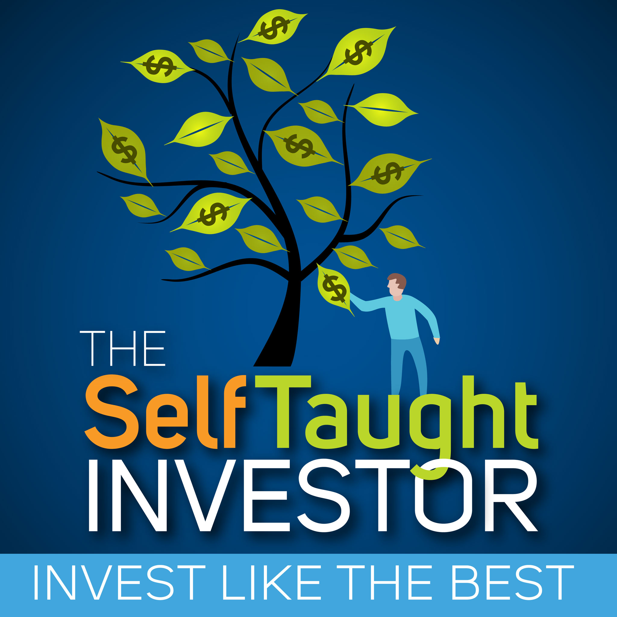 The Self Taught Investor